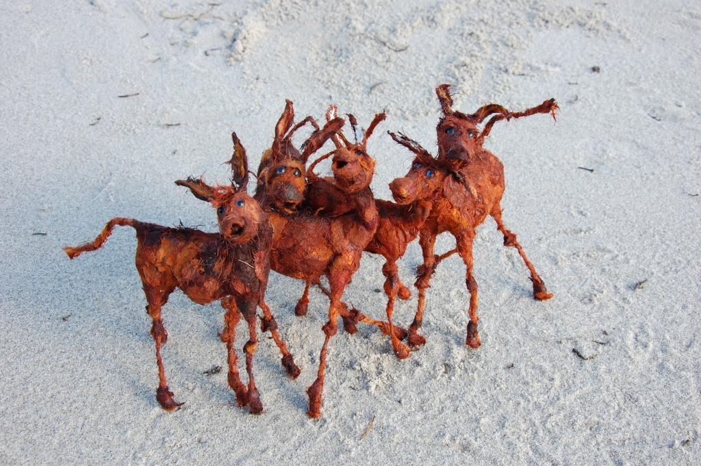 Kind of Donkeys